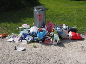 Garbage Piling Up needing  junk removal