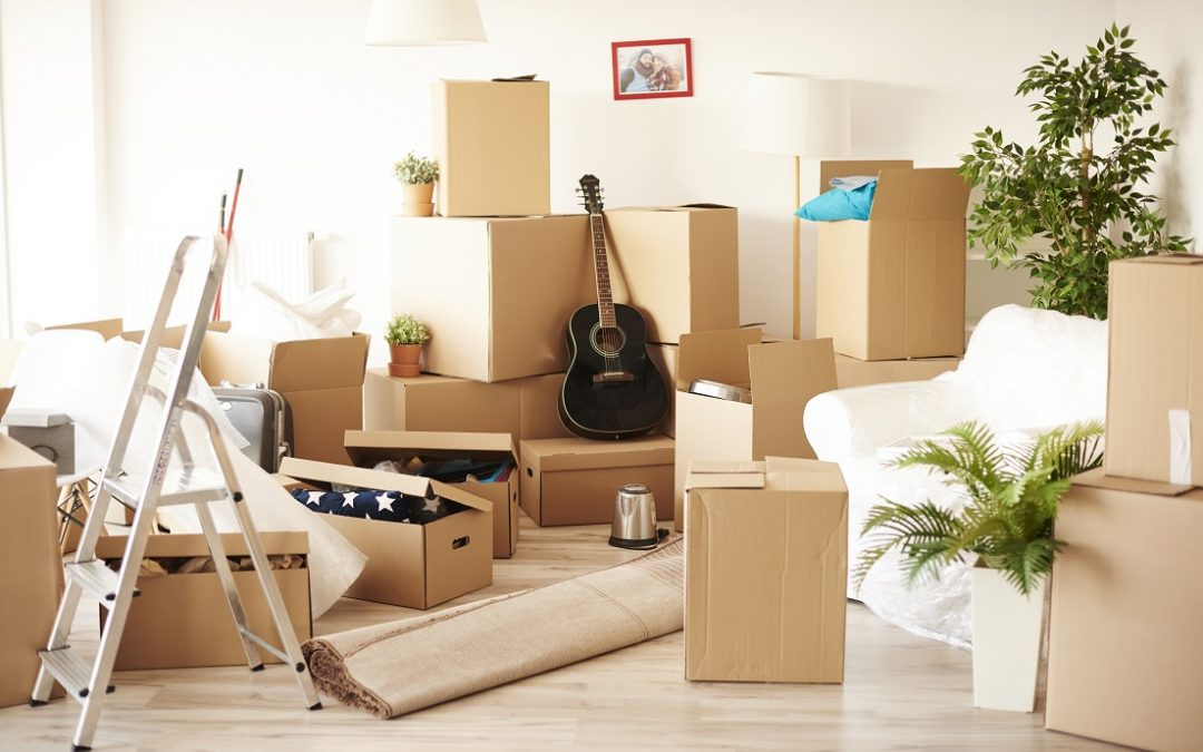 The Hoarder's House Clean-Up Guide: All You Need to Know!